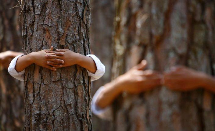 ¿Quieres, en serio, combatir el cambio climático? Ten menos hijos